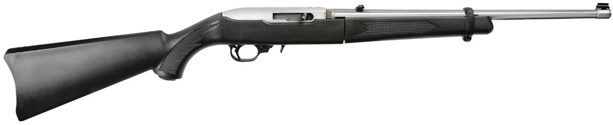 Ruger 10/22 take down 22lr